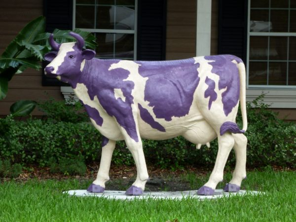 Being a Purple Cow Thanks to Seth Godin | KazCM