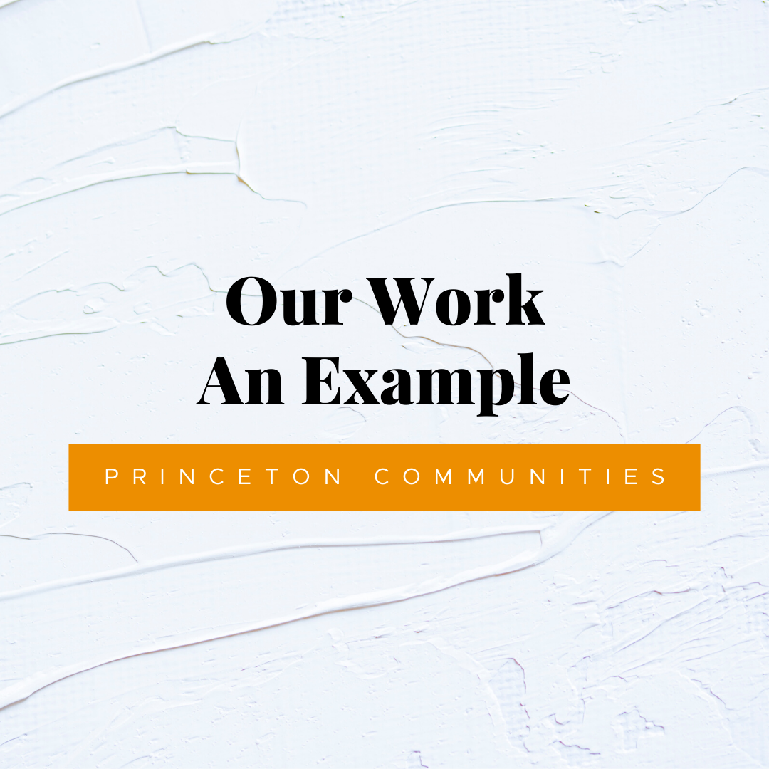 An Example of What We Do: Princeton Communities | Website Design
